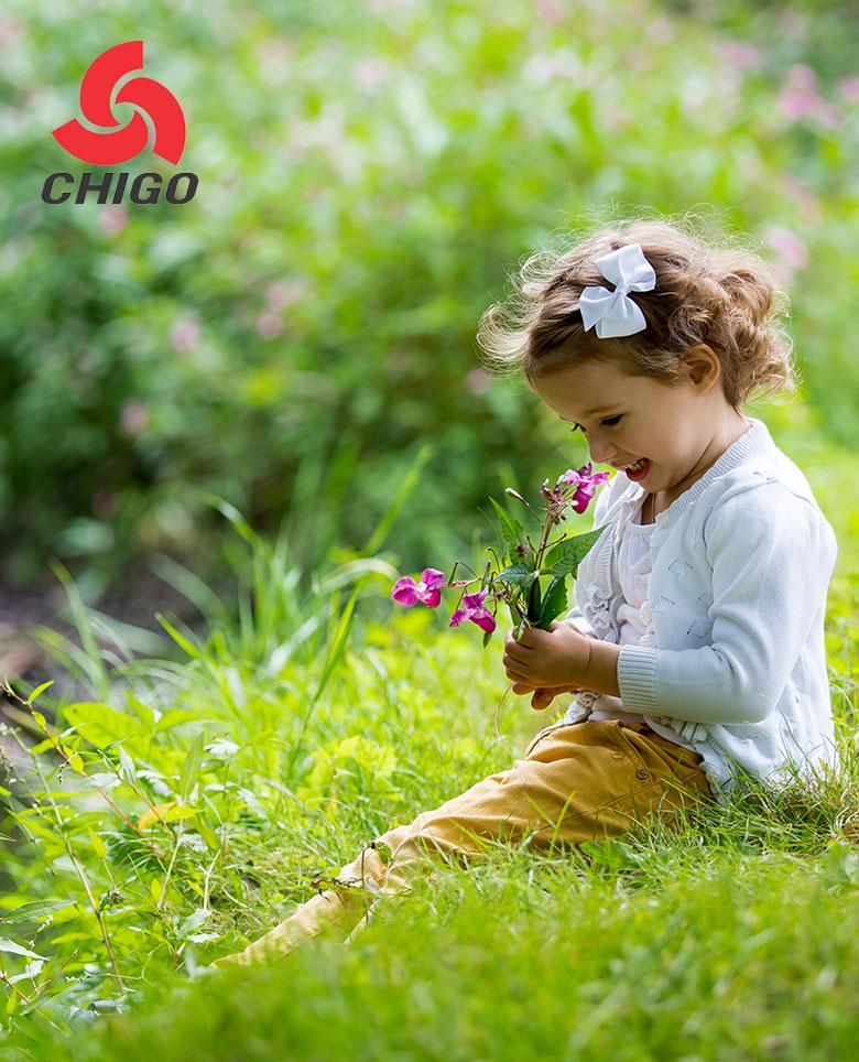 chigo-cat-cover